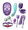 accessories for bdsm sexual roleplays set vector image