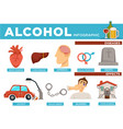 alcohol infographic diseases and effects on body vector image vector image