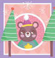 bear with hat trees snowflakes merry christmas tag vector image vector image