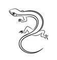Cartoon of little lizard outlined vector image