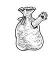 cat in bag sketch vector image vector image