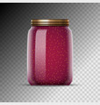 glass jars with jam canned vector image vector image