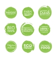 Green Eco Food Labels Health Headings vector image vector image