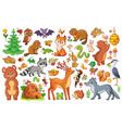 set with animals and birds vector image vector image