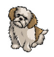 shih tzu dog mascot cartoon vector image vector image