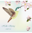 Spring Blossom Flowers and hummingbird vector image vector image