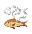 hand drawn goatfish black and white and color vector image vector image