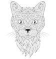 head cat on white background vector image vector image