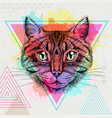 hipster animal cat on artistic polygon watercolor vector image vector image