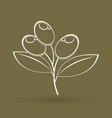 olive outline graphic vector image vector image