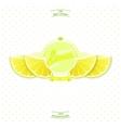 Premium quality lemon juice vector image vector image
