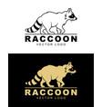 raccoon logo vector image