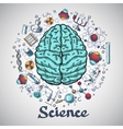 Brain sketch science concept vector image vector image