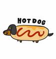 dachshund dog in hotdog cartoon logo vector image vector image