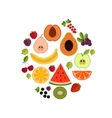 Fruit flat composition vector image vector image