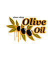 olive oil cooking olives product icon vector image vector image