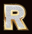 r bling bling vector image vector image