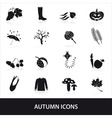 autumn icons set eps10 vector image vector image