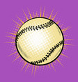 baseball and tennis ball vector image vector image
