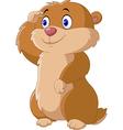 Cartoon funny Groundhog vector image