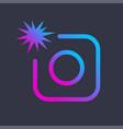 colorful image icon photo digital camera vector image vector image