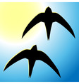 flying swallow vector image vector image