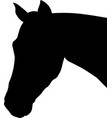 horse profile silhouette vector image vector image