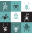 Set of labels with the image of arachnids vector image vector image