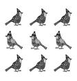 cristmas birds with hats zentagle pattern vector image