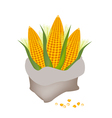 A Pile of Fresh Corn in A Sack vector image vector image