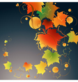 dark autumn vector image vector image