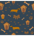 seamless dachshund dog pattern with bones bows vector image