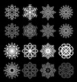 set snowflakes on a black background vector image