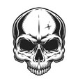 vintage skull template vector image vector image