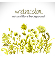 Watercolor beautiful green background vector image vector image