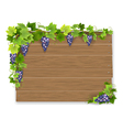 branch of grapes on wooden sign vector image
