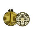 fresh onion with slice organ vegetable food vector image vector image