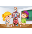Students learning about human anatomy vector image vector image