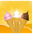 Tropical sunset ice creams vector image vector image