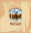 whiskey in the bar alcoholic beverage or drink vector image