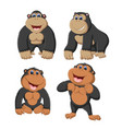 collection of the gorilla vector image vector image