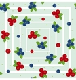 Cranberry and blueberry seamless pattern 2 vector image vector image