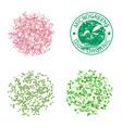 groups of young sprouts microgreens vector image vector image