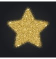 Icon of Five-pointed star with gold sparkles and vector image