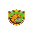 Jaguar Head Side Growling Shield Retro vector image vector image