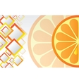 Juicy orange background vector image vector image