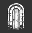 middle age vintage door vector image