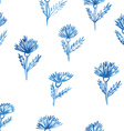 pattern flowers aquarelle cornflower vector image vector image