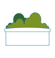 bush in a pot icon vector image vector image