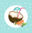 coconut cocktail drink summer refreshment vector image